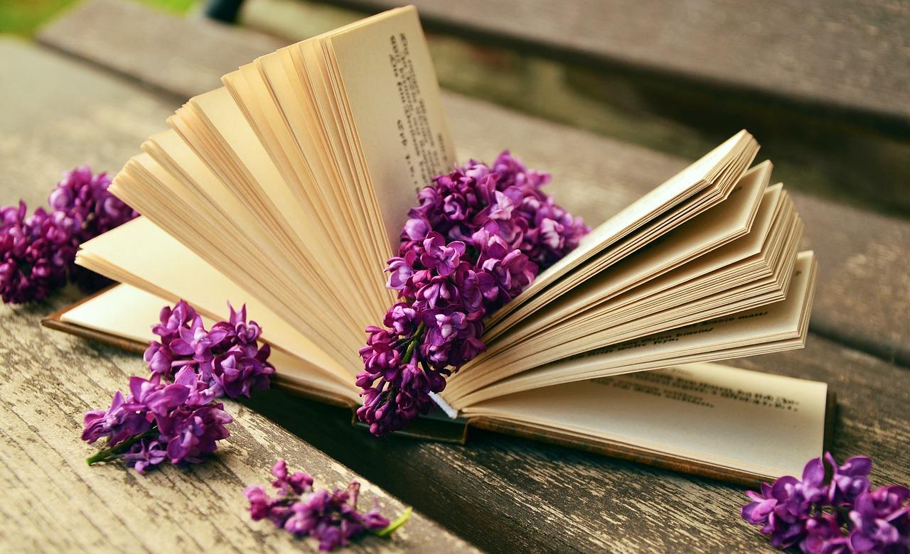 Как я стала Книга или Бог шельму метит