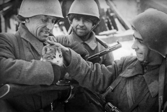 Хроники военного времени