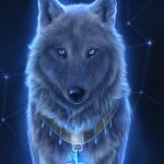 Поверить в звездного волка