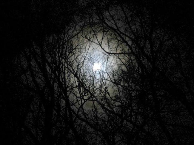 Ночь в квартире