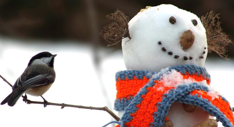 Снежные радости: СНЕГОВИКИ
